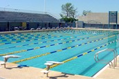 = OLYMPIC SIZED SWIMMING POOLS x600!