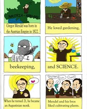Mendel's Discovery