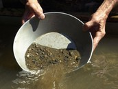Panning for Gold pieces