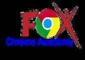 Fox C-6 Chrome Academy