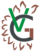 The Vasu Group Ltd.