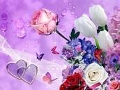I love flower