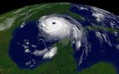 What happened at Katrina