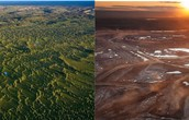 A before and after picture of Deforestation