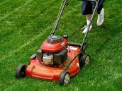 Great Lawn Care At A Great Price