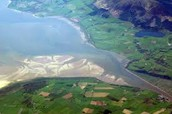What is an estuary