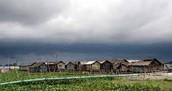 Humid Monsoon