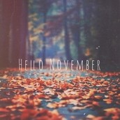 November is upon us-so long October and that lovely extra hour of sleep we all neglected to utilize, I'm sure!