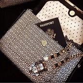 Tia Crossbody purse and Phoenix Pendant