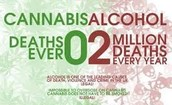 No overdose deaths recorded ever.