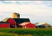 A Good, Healthy Farm