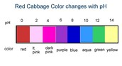 What is the color range?