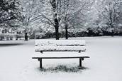 Nice snowy day