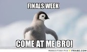 BTHO Finals