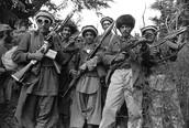 Group of Mujahideen