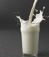 Don't use cow milk! Instead use almond milk, rice milk , coconut milk or hemp milk for your ice cream