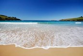 This region has a beachs in most of there states.