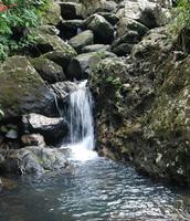 Catarata del Parque Natural