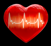 Heartifacts