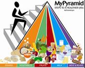 Debes comer la carne, los cereales y las grasas cada día para mantener la salud.