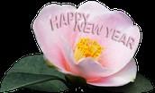 Wishing You A Happy January Birthday!