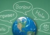 Foreign Language Requirements