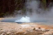 swimming in geysers