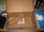 Egg Drop...
