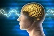 Wat houdt de ziekte van Parkinson nou eigenlijk in?