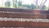 """En uno de los escalones de Temaiken, Buenos Aires, por si no se nota dice: """"Hay un libro abierto siempre para todos los ojos, la naturaleza"""" Rousseau"""