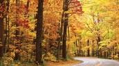 October Teaches Us God's Paths
