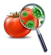 voedselveiligheid in  Nederland.