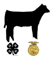 Seward Calf Classic