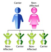 Carrier & Non-Affected