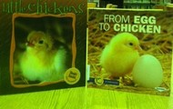 New chick books ready for the peeps next spring