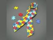 Autism Scholarship Students