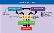 The Risk Factors of Drug Use