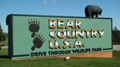 Bear Country U.S.A