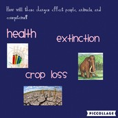 HOW WILL GLOBAL WARMING EFFECT HUMANS, ANIMALS, AND ECOSYSTEMS?