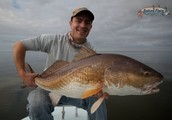 Take pleasure in Your own Journey By simply Attempting New Orleans Angling