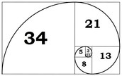 What is the Golden Ratio and Spiral?