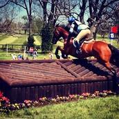 Kentucky Rolex 2014 Jump 3'6
