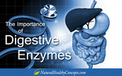 Improve Digestion With An Enzyme Called Chymotrypsin