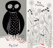 New York Times Best Illustrated Books of the Year