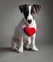 Valentine-O-Grams $1