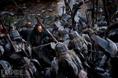 Ordeal- is the battle of the 5 armys and Gandalf thought it was to dangers for Bilbo