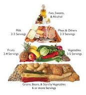 A GOOD DIABETIC DIET (RECOMMENDATIONS)
