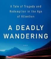 A Deadly Wandering by Matt Richtel *