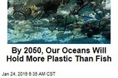 By 2025 more plastic will be in the ocean than fish!