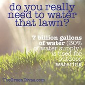 Don't Waste Your Water on the Lawn